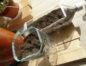 ペットボトルのプランター作り&赤紫蘇の種まきをしよう!
